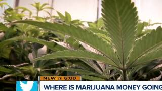 Marijuana tax money for schools: Where is it going?