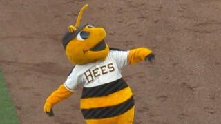 Bees Mascot.jpg