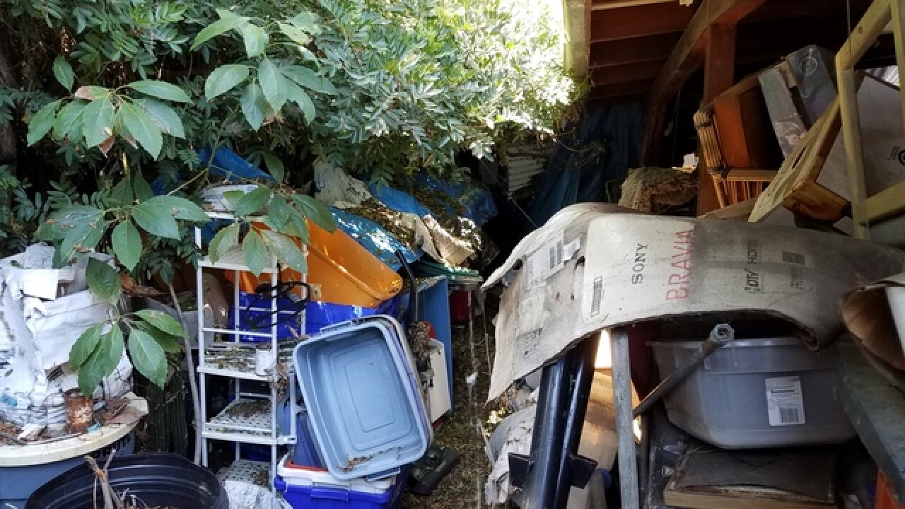 Court OKs clean up College Area 'hoarder' home