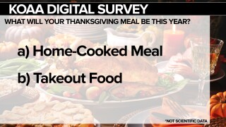 Thanksgiving meal survey