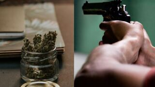 Medical Marijuana or Guns.JPG