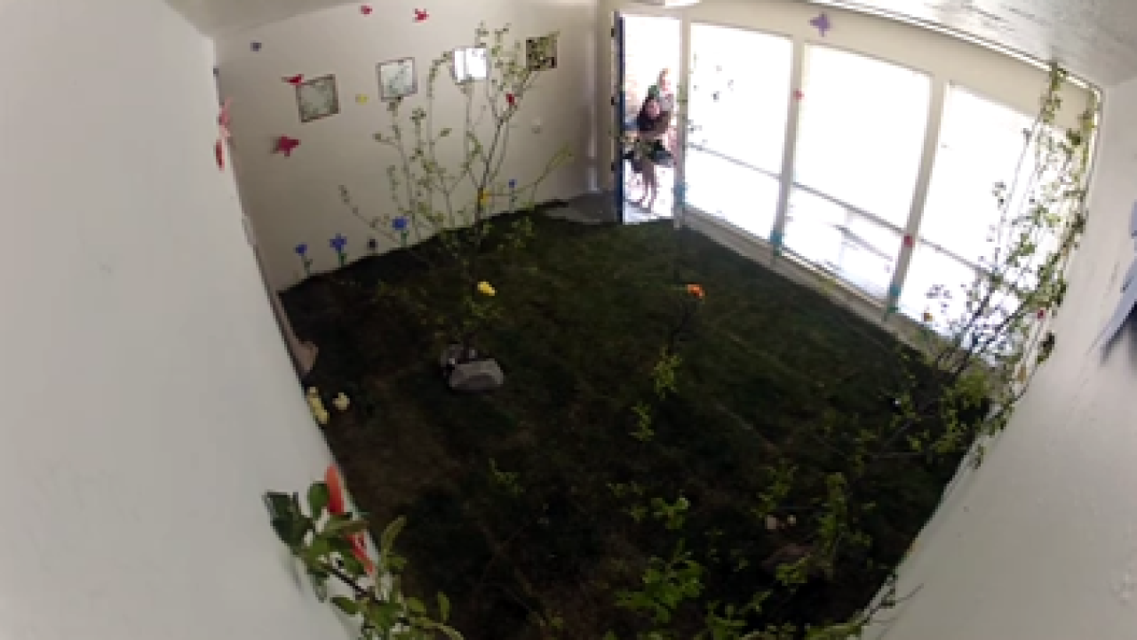 Girls get Easter pranked with live animals