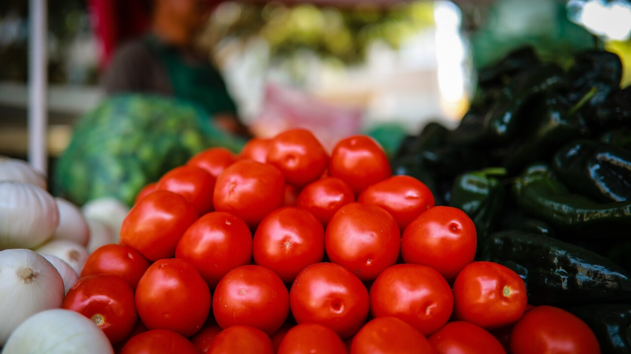 United States Imposes New Tariff On Mexican Tomato Imports