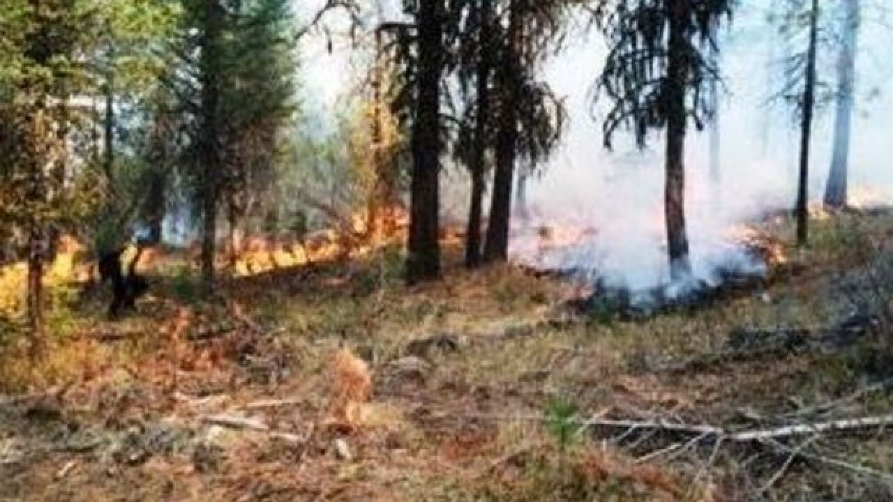 Forest Service: billions of dollars available to fight major wildfires