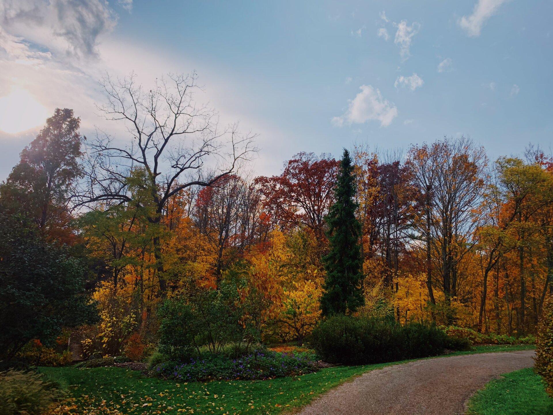 Holden Arboretum8.jpeg
