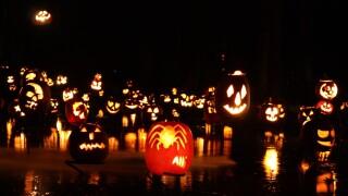 Spooky halloween trail .jpg