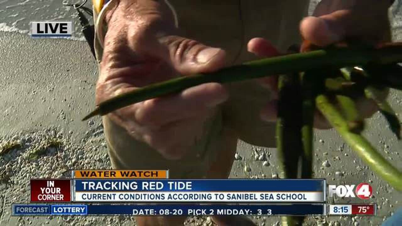 Tracking red tide conditions on Sanibel Island