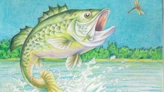 largemouth-bass-drawing.jpg