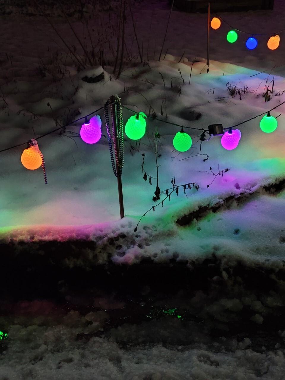 Mardi Gras Lights Penny Ladnier.jpg