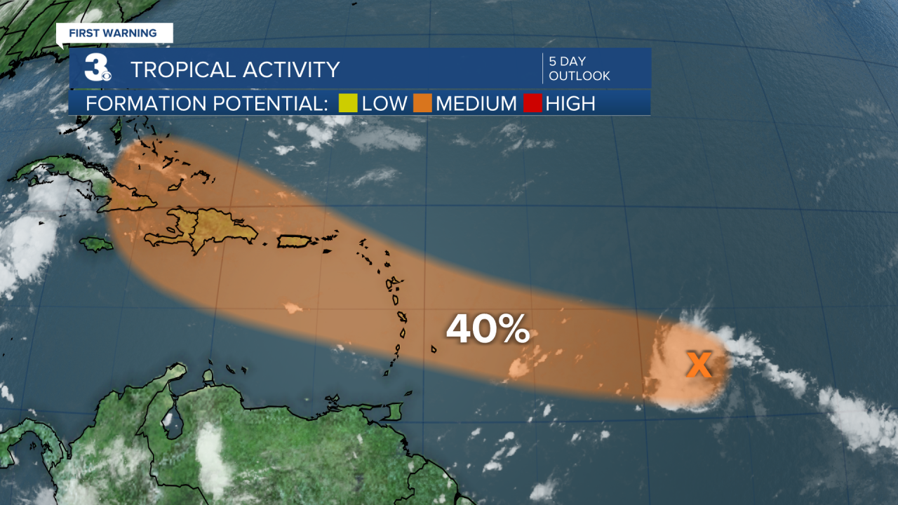 Tropical Activity (1).png