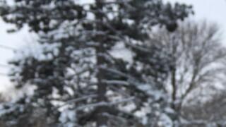 PHOTOS: Winter wonderland across Northeast Ohio