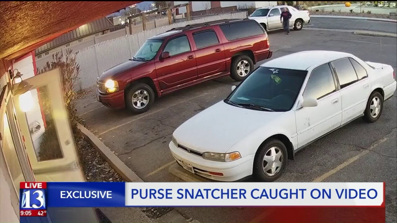 Man caught on camera taking purse from car outside Roydaycare