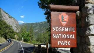 Yosemite's haven for giant sequoias ready for visitors
