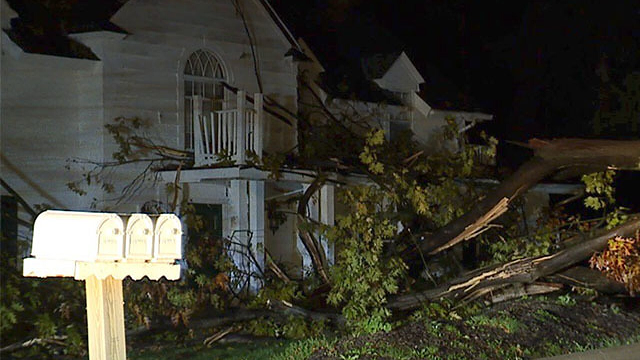 Large tree falls onto home in Willoughby Hills