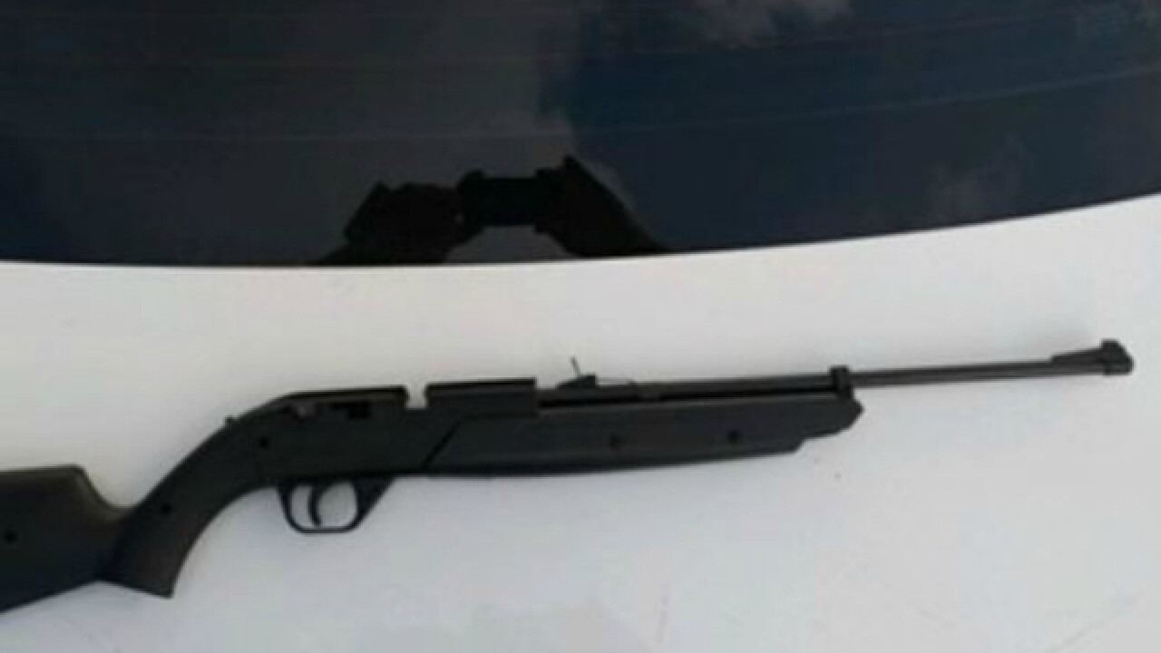 Toddler shot in head with pellet gun, critical