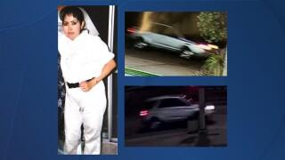 Isabel Sandoval san ysidro hit and run.jpg