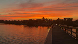 safety-harbor-pier-sunset.png