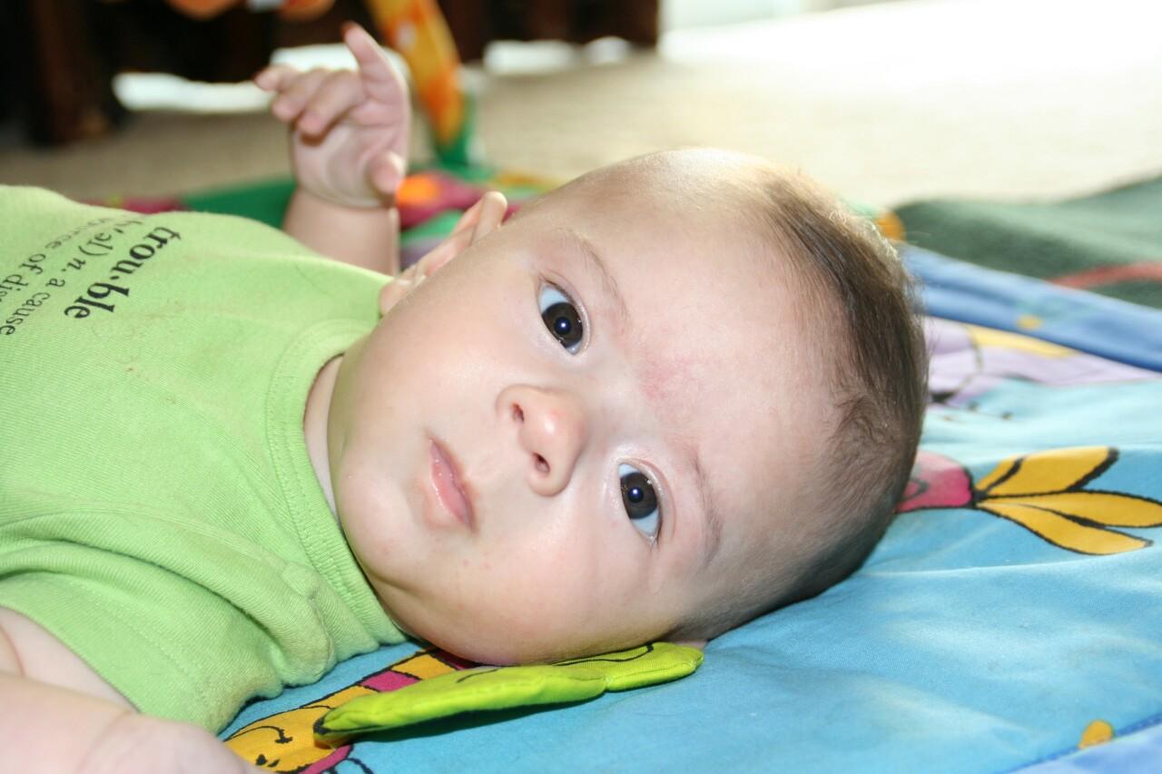 baby gannon.JPG