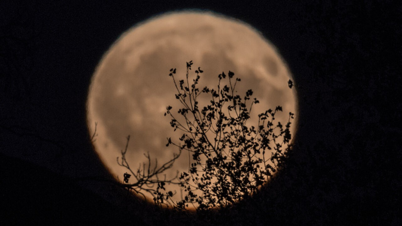 LOOK UP: It's a full harvest moon tonight