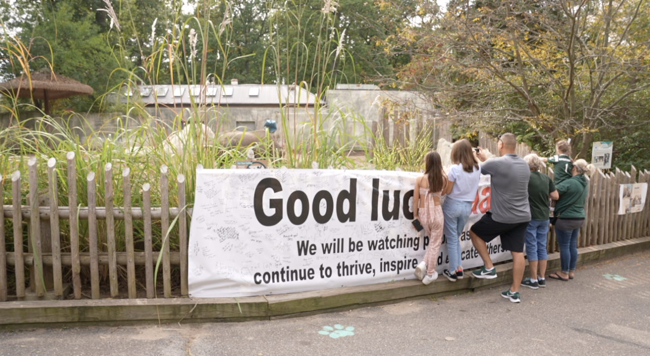 Good luck, Jaali sign at Jaali's goodbye party at Potter Park Zoo