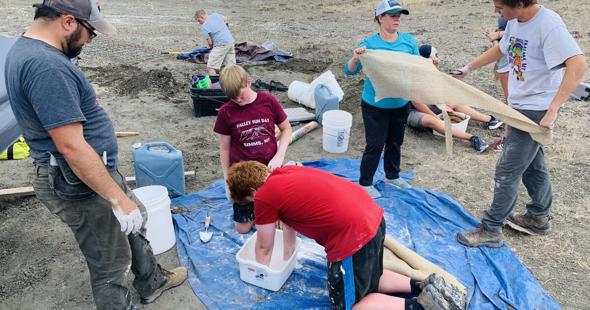 Leviathan fossil discovery by Helena area father and son creates unforgettable learning opportunity