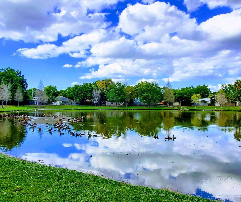 Ragan Park by Jacqueline Coviello.jpg