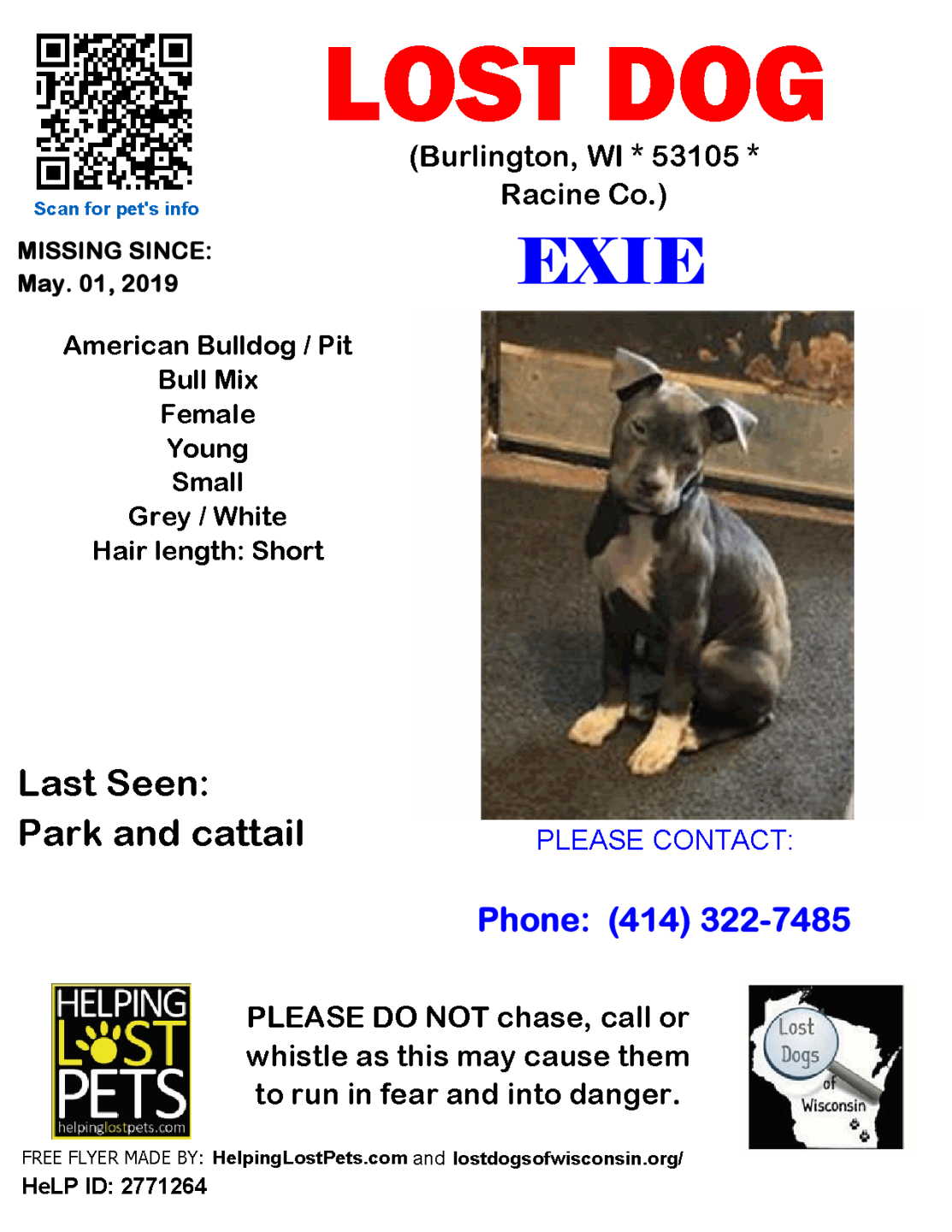 050119 Exie Amer Bull Pit Mix Young.png
