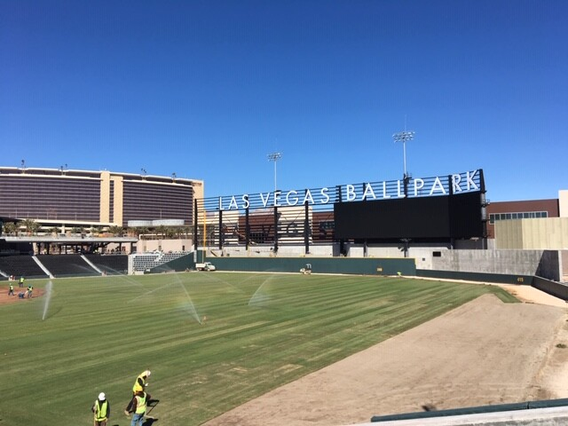 final grass LV ballpark.jpeg