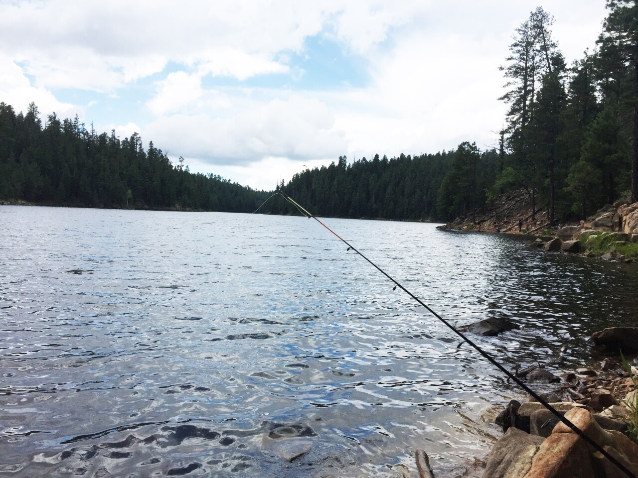 Five best places to fish this summer in northern Arizona