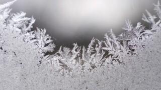 Frost - ice - frozen