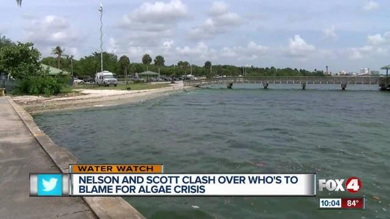 Nelson blames Scott for algae woes