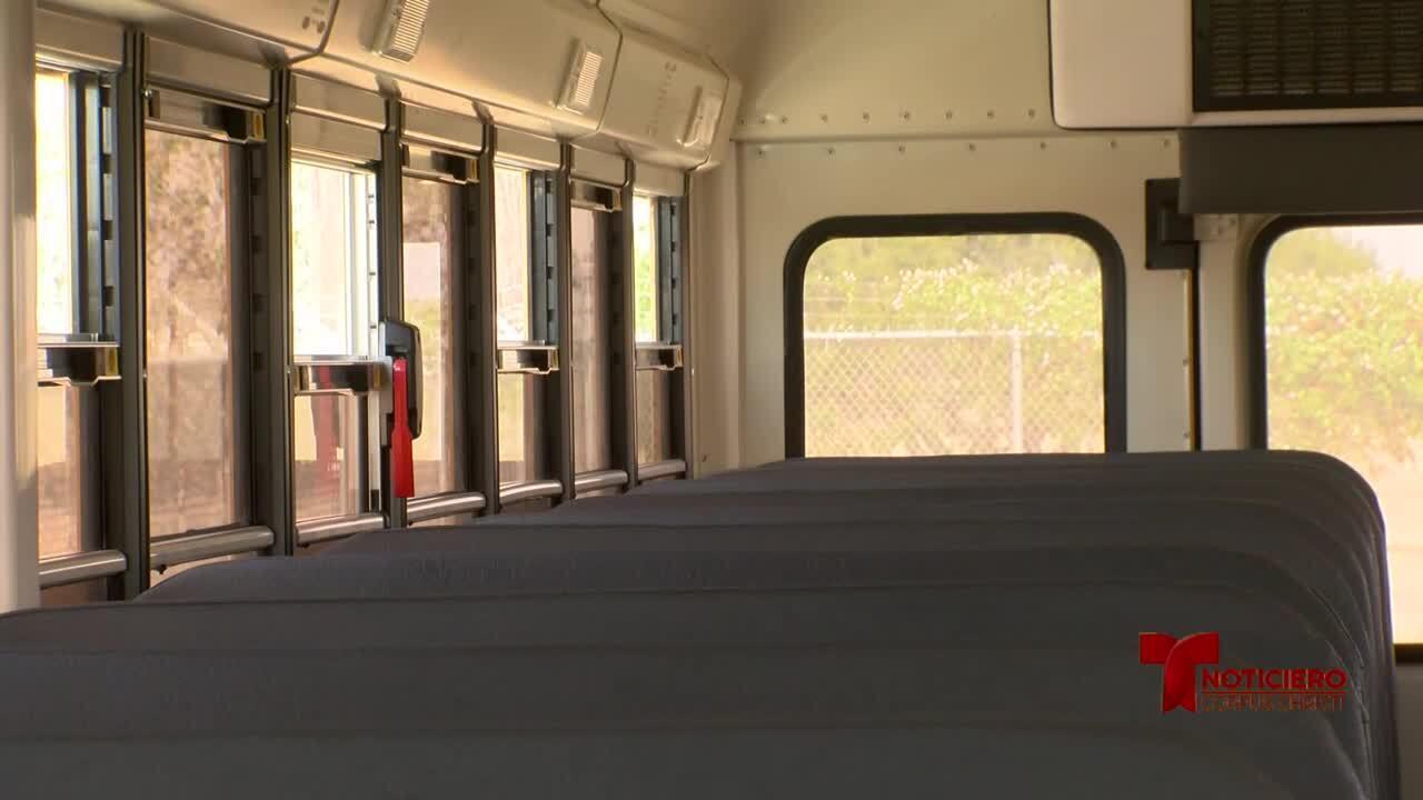 autobuses escolares 0908.jpg