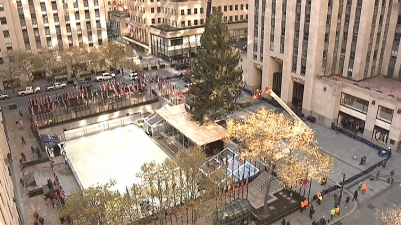 The Rockefeller Center Christmas tree was delivered on November 14, 2020 and will be lit on December 2.