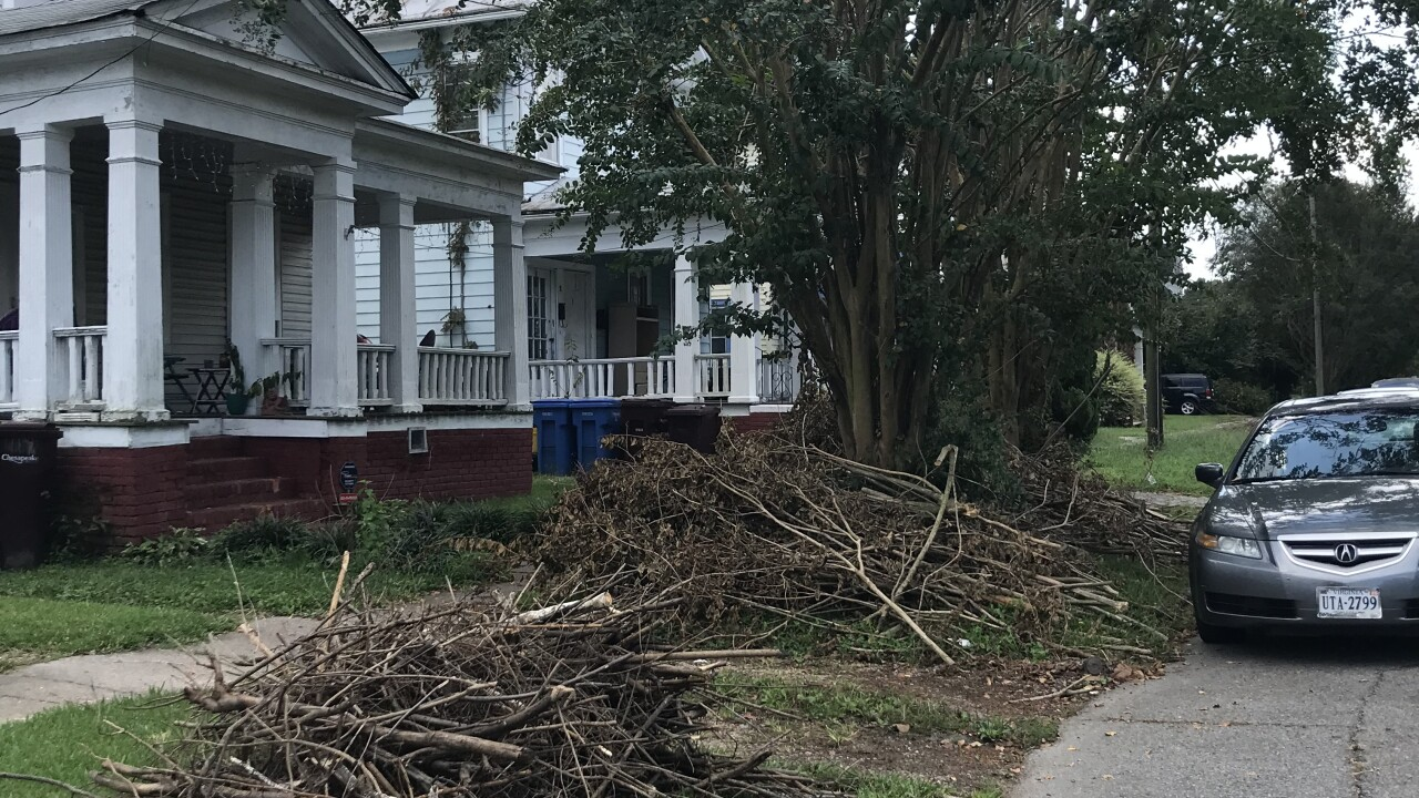 Who is responsible for cleanup after tree branches, limbs overtake South Norfolk home's yard, sidewalk?