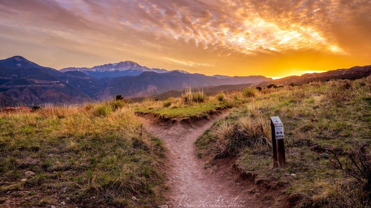 GOG sunset Daniel Forster