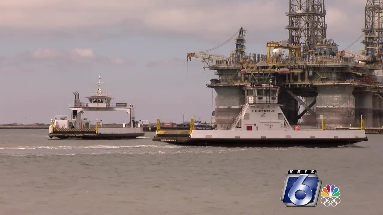 Special report: How will development affect the fragile ecology in Corpus Christi Bay?
