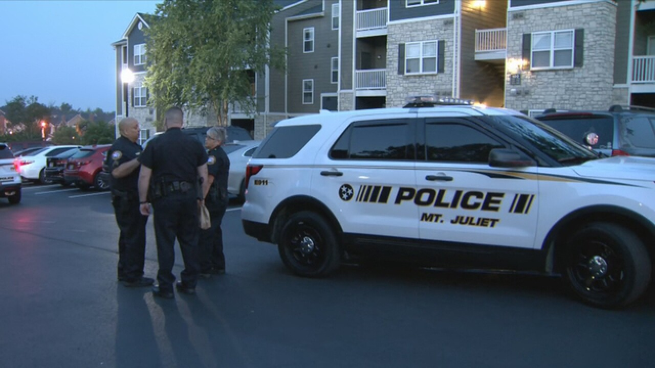 Driver Arrested After Mt. Juliet Hit-And-Run