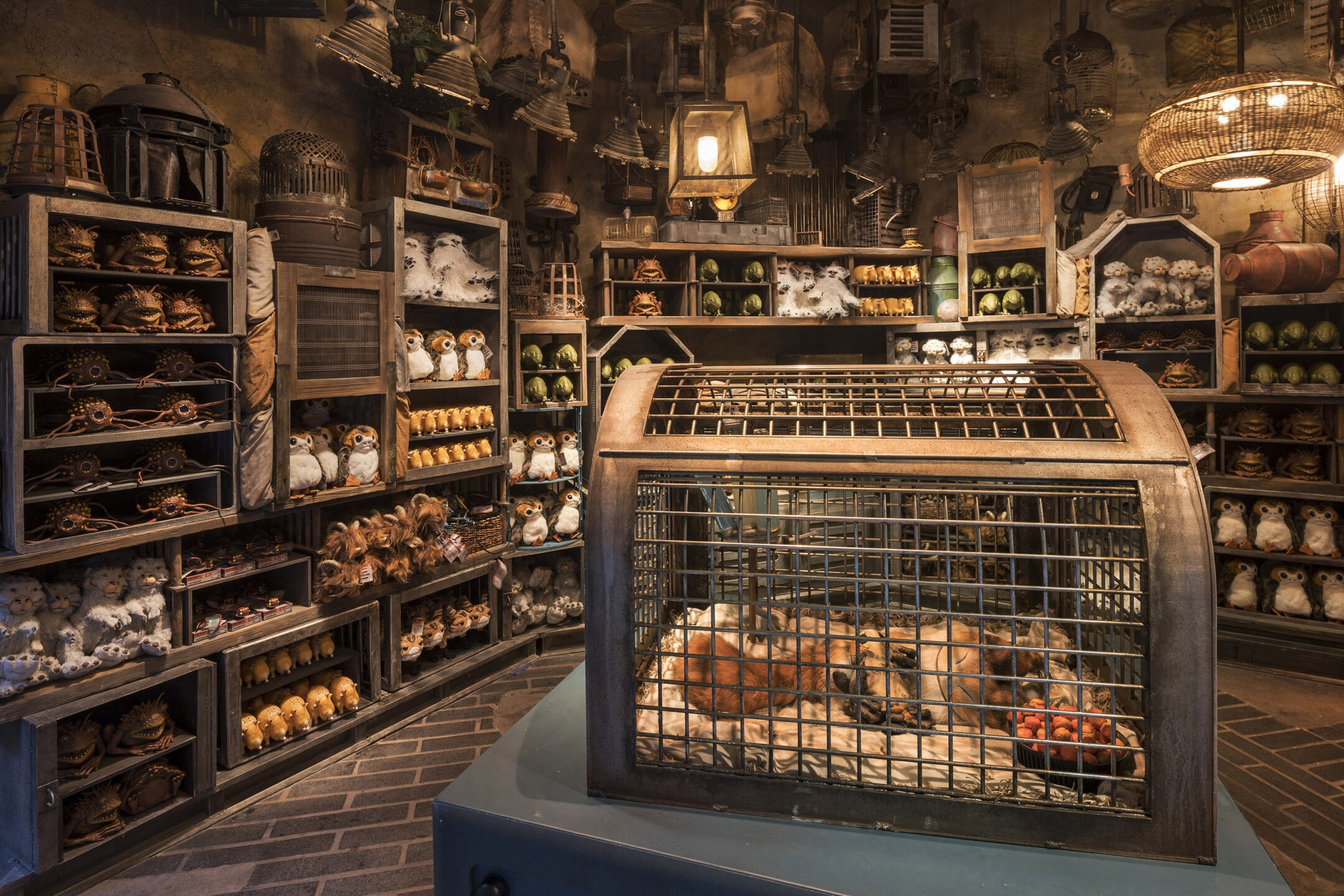 Creature Stall at Star Wars: Galaxy's Edge