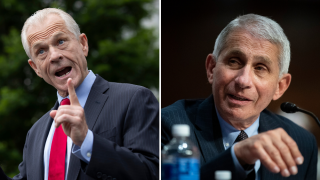 White House's top trade expert attacks Fauci in USA Today op-ed