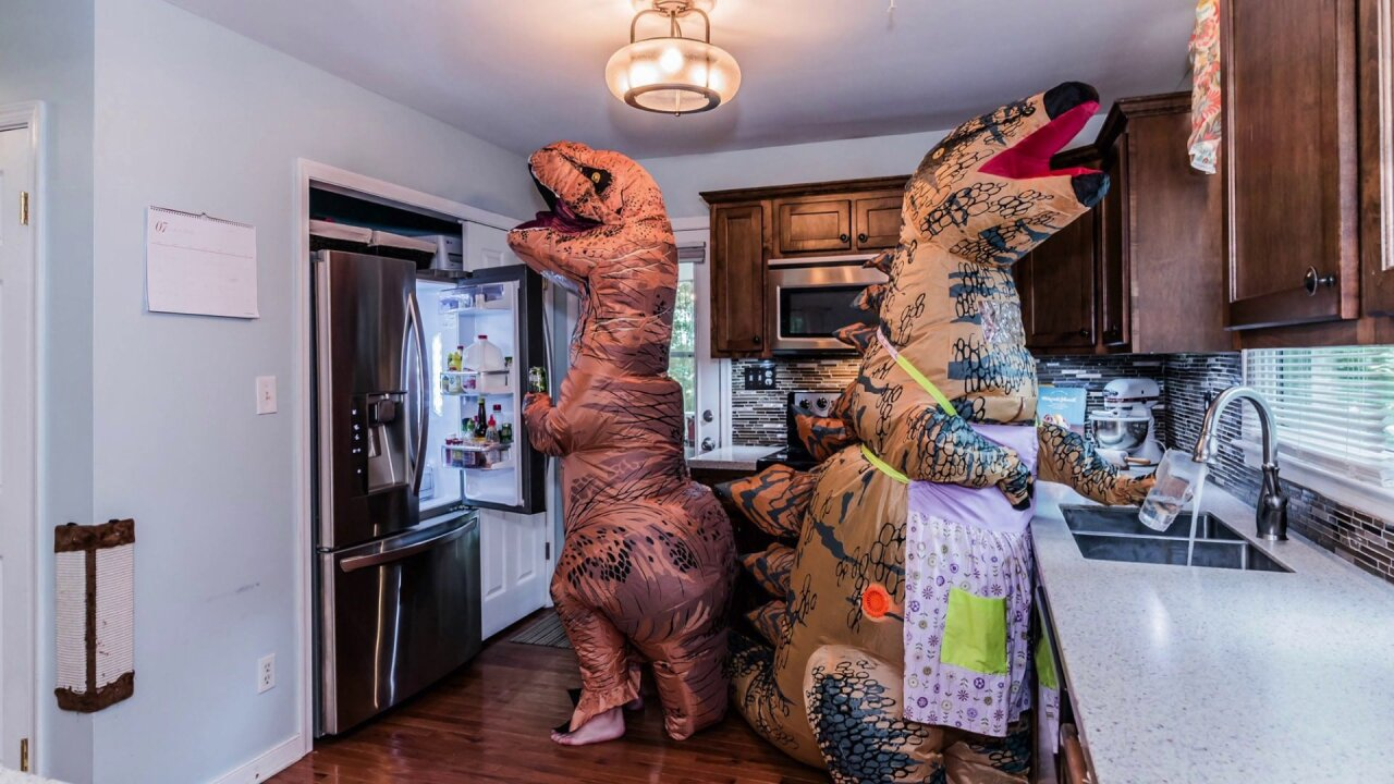 Realtor uses dinosaurs to stage home after life throws Midlothian couple 'curveball'