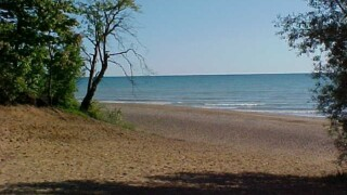 6 Michigan beaches closed due to high bacteria levels
