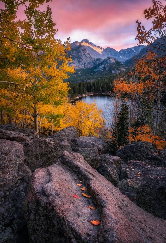 RMNP fall colors_Evan Gerstung
