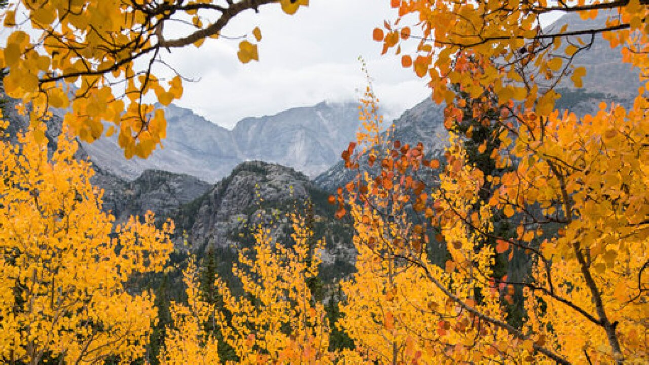 5 GREAT places to see the fall colors now