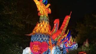 Cleveland Metroparks Zoo Asian Lantern Festival