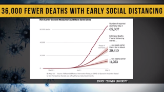 Study: 36K lives could have been saved if social distancing measures were implemented a week earlier