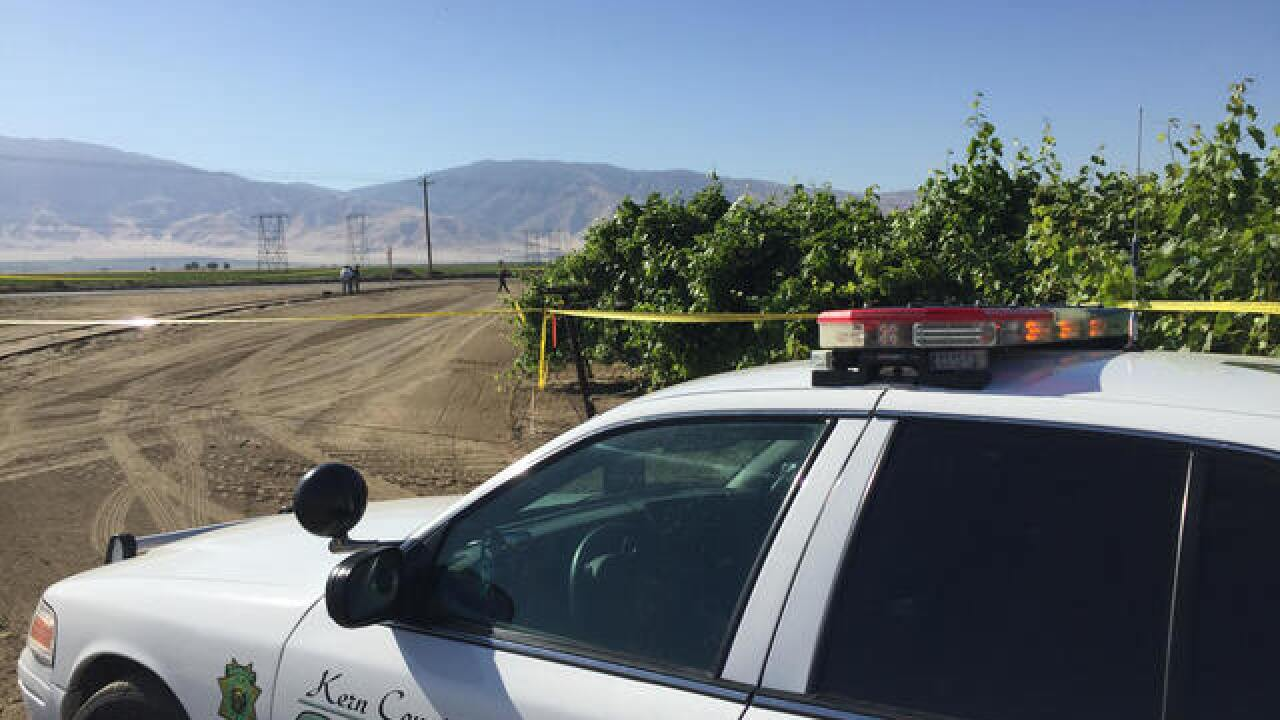 Two dead bodies found in Arvin grape vineyard