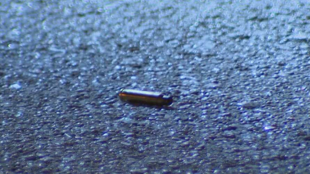 Several Rounds Fired At Antioch Home