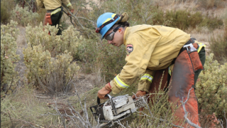 CAL FIRE/San Diego County Fire