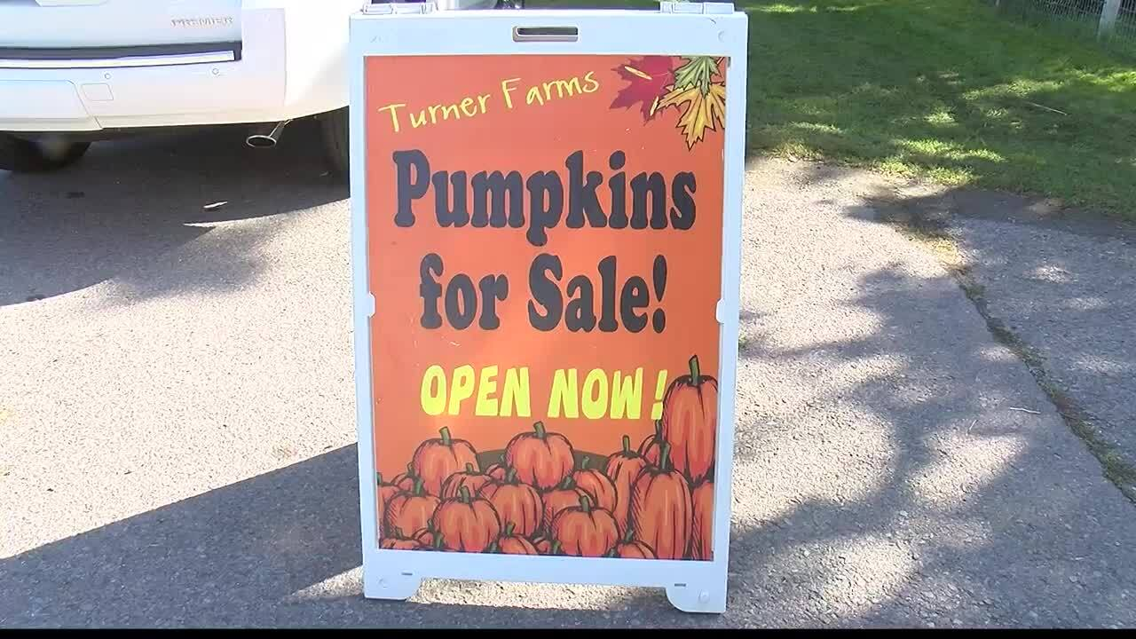Crowds turn out for Turner Farms Pumpkin Festival in Missoula