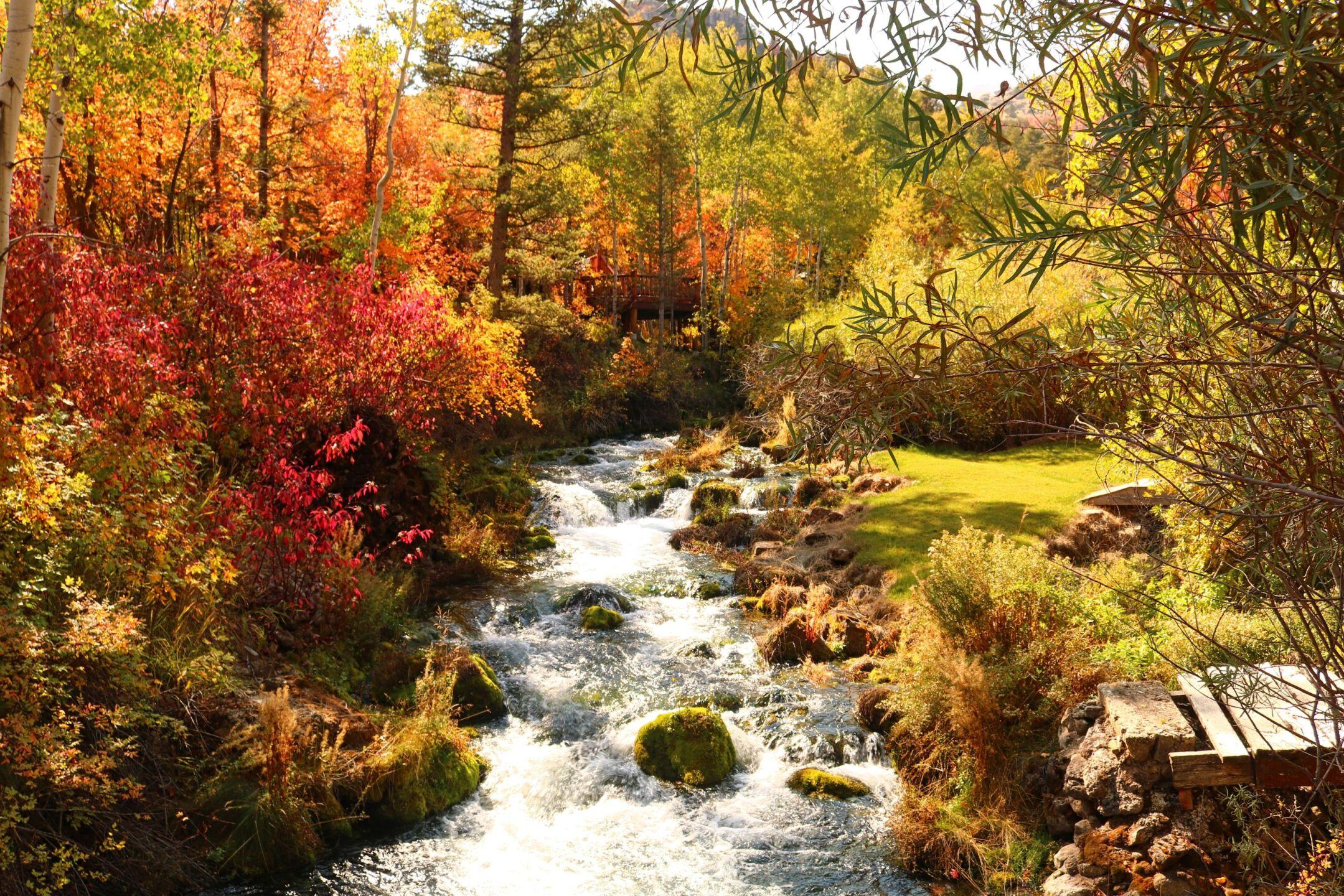 Carol Dyer Bear Lake valley (8).jpg